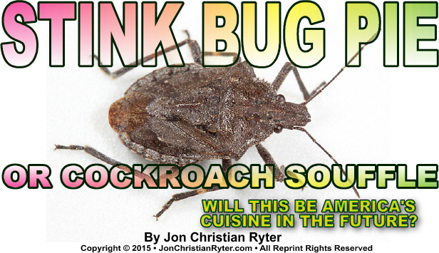 Stink Bug Pie